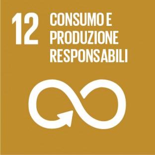 Sustainable_Development_Goals_IT_RGB-12
