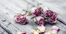 D flowers 5